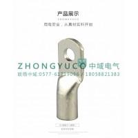 JG管压铜鼻子 管压接线端子 SC系列铜鼻子 10平方
